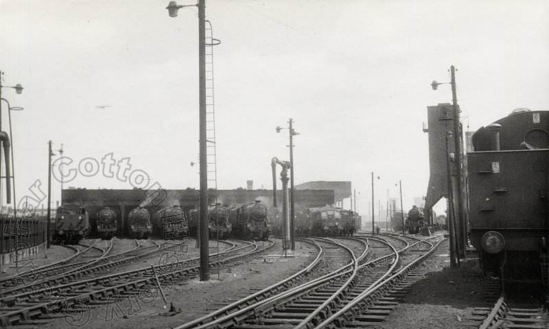 Northampton Steam Shed 1962